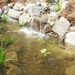 Pond and Water Feature Installation in Raleigh, North Carolina