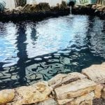 Pond Repair Services in Raleigh, North Carolina