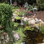 Pond and Water Feature Repair Services in Raleigh, North Carolina