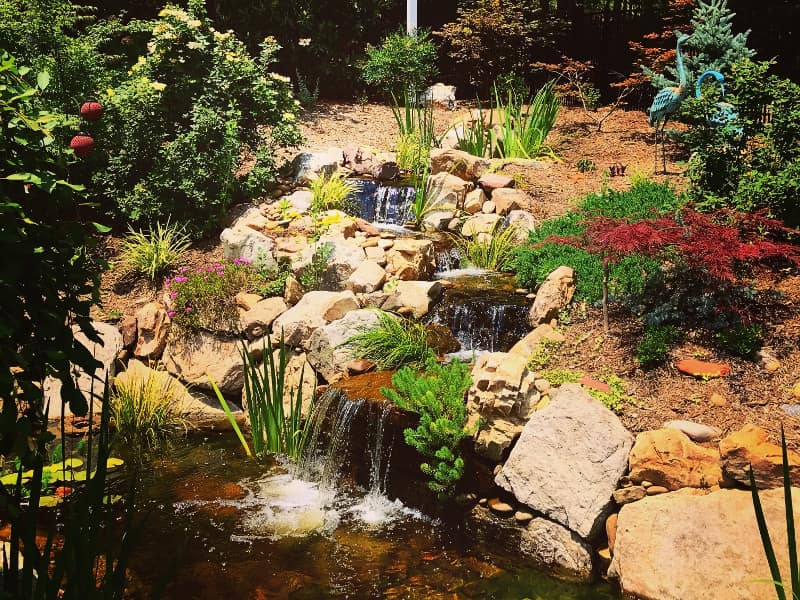 Pond Repair Services