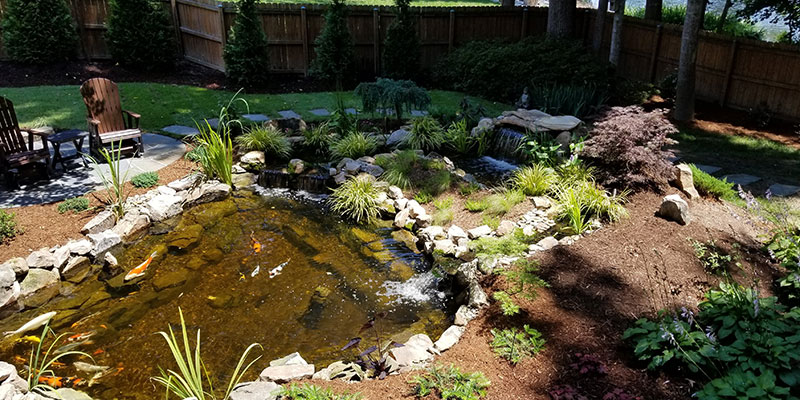 Water Feature Maintenance Services in Raleigh, North Carolina