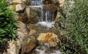 Signs You Need Water Feature Repair Services