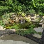 Pond Company in Chapel Hill, North Carolina